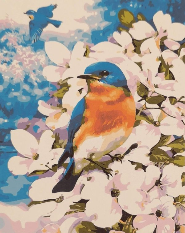 Finch in blossom tree